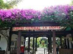 グァテマラアンティグア農園