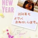 2013-12-30_10.09.07(1)